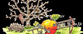 Obstbaumschnittkurs intensiv am 01. und 02.02.2018
