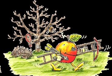 Obstbaumschnittkurs intensiv am 23. und 24.02.2018