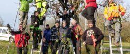 """PM Main-Taunus-Kreis, 27.11.2020 – Die ersten 16 """"Streuobst-Baumwarte"""" sind ausgebildet"""