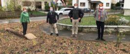 PM Neuer Lebensraum für Insekten in Hofheim – Diedenbergen